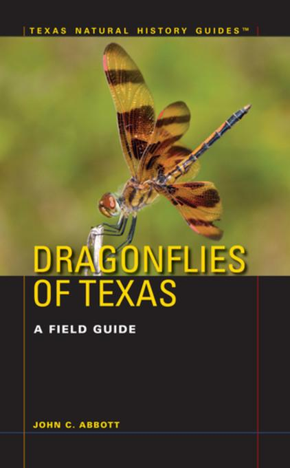 an introduction to the nature of dragonflies 58598435 introduction to the nature of nature book two item preview language english introduction to the nature of nature book ii.